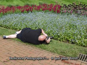 Dedicated Photographer