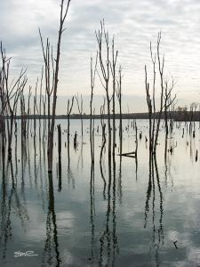 Manasquan Reservoir Old Timers