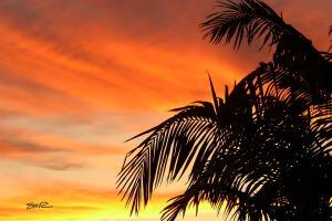 Santa Anna Sunset