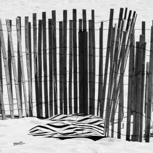 Sticks & Shadows