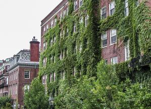 Boston Ivy League